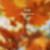 stock photo of fall decorations  - I love Autumn retro poster with abstract blurred fall background - JPG