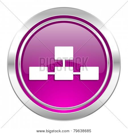 database violet icon