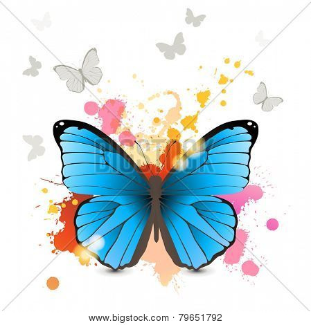 Morpho butterfly over bright background