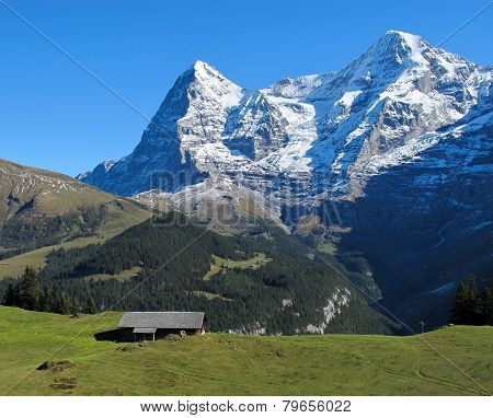 Eiger and Moench in the Summer