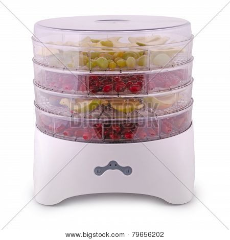Dehydrator For Vegetables And Fruits (clipping Path)
