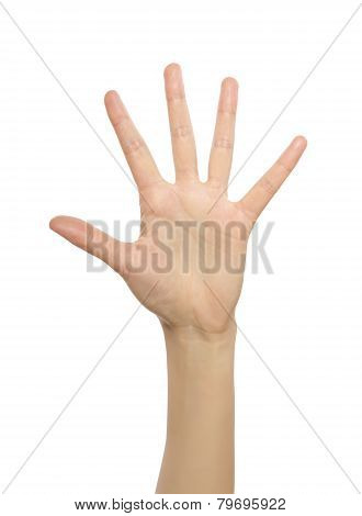 Woman hand showing number five.