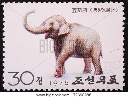 North Korea - 1975: Postal Stamp Printed In North Korea Shows An Image Of An Elephant On A White Bac