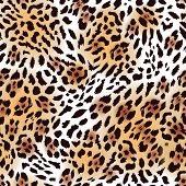 picture of leopard  - Far Eastern leopard fur seamless vector print - JPG