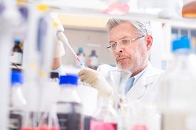 stock photo of genes  - Life scientist researching in laboratory - JPG
