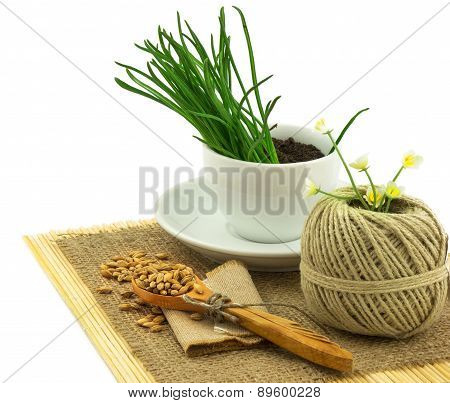 Composition From Grass In The Cup And Plate, Seeds, Mat, Sacking, Spoon, Thread
