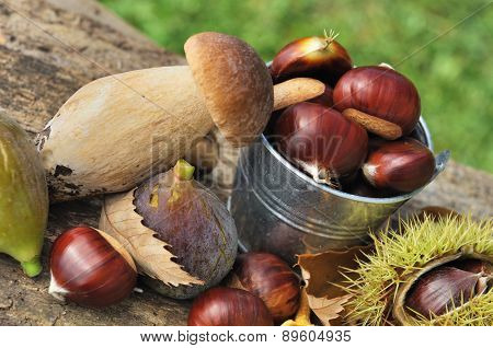 Autumnal Fruits And Porcini