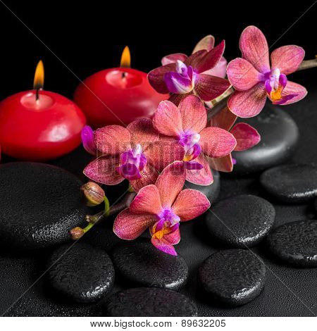 Beautiful Spa Concept Of Blooming Twig Red Orchid Flower, Phalaenopsis With Water Drops And Candles