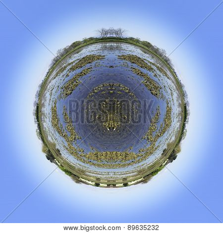 Paddy field abstract world. Color image