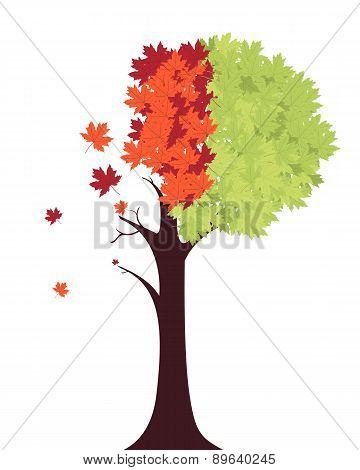 Changing seasons from summer to autumn. Vector illustration