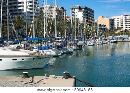 Yachts in marina and hotels along the Paseo Maritimo