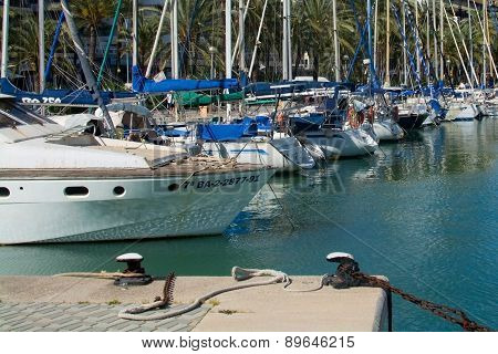 Mediterranean maritime scene with yachts palm trees and moorings