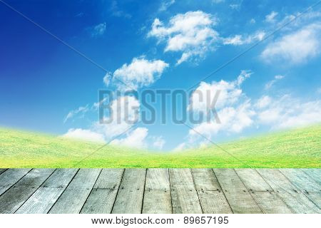 Green Grass And Blue Sky With Wooden Paving.