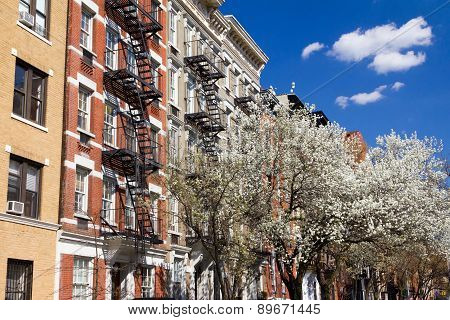 New York City Street In Spring