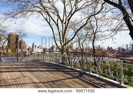 Bridge In Central Park, NYC