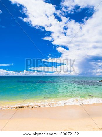 Sunshine Surf Windy Holiday