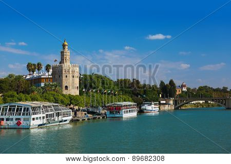 Tower of Gold in Seville Spain - nature and architecture background
