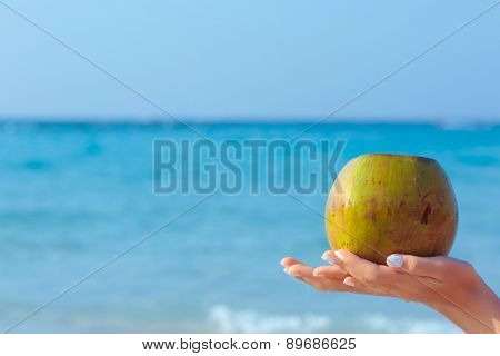 Female hands holding coconut on sea background