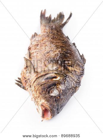 Grilled whole carp fish.
