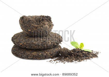 Tea Puer
