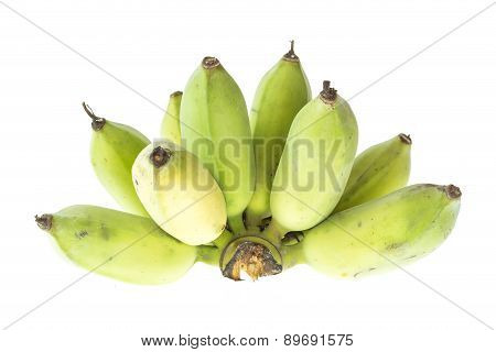 Cultivated Banana, Thai Banana Isolated On White