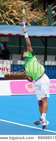 Fernando Verdasco makes contact at serve