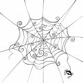 stock photo of spider web  - Isolated spider web in a fun way - JPG