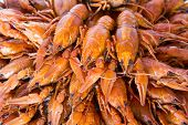image of crawfish  - Photo of background with red boiled crawfishes - JPG