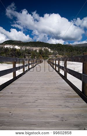 Boardwalk At Mammoth Hot Springs