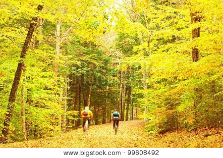 Autumn scene with cyclists somewhere in New England. Blurred unrecognizable people.