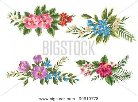 Set of floral bouquet isolated on white background with classical and tropical flowers