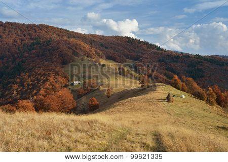 Mountain Village. Autumn Landscape with beech forest on the slopes. Carpathians, Ukraine, Europe