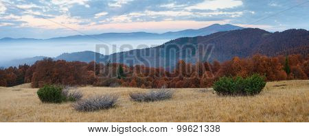 Cloudy morning in the mountains. Autumn landscape panorama with beech forests. Carpathians, Ukraine, Europe