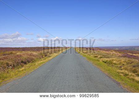 Moorland Road In Summer