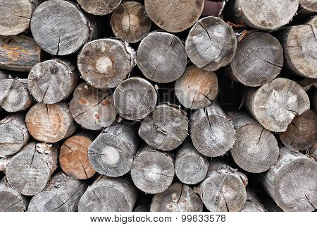 Pile of cut tree trunks and logs with concentric year wooden rings. Dry chopped firewood logs stacke