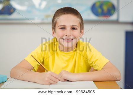 Portrait of smiling pupil working at his desk in a classroom in school