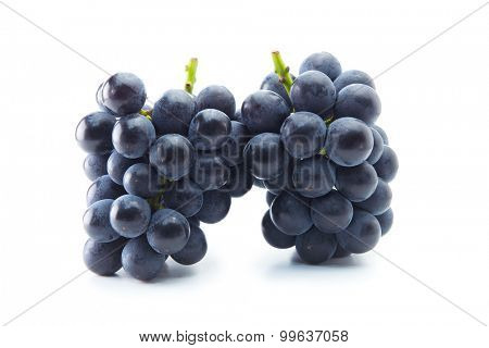 Two Kyoho grapes (giant mountain grapes) upright, isolated on white.