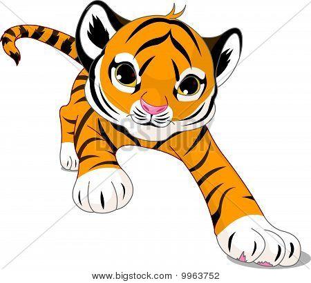 Running  Baby Tiger