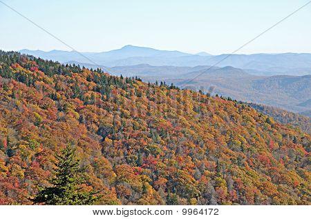 Autumn Appalachain Vista