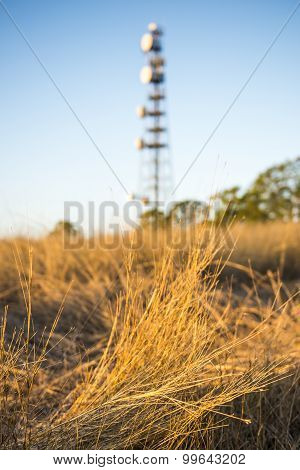 Radio Tower in Queensland