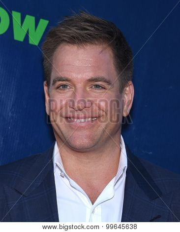 LOS ANGELES - AUG 10:  Michael Weatherly arrives to the Summer 2015 TCA's - CBS, The CW & Showtime  on August 10, 2015 in West Hollywood, CA