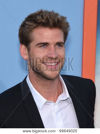 LOS ANGELES - JUL 27:  Liam Hemsworth arrives to the