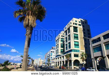 Shlomo Lahat Promenade In The Tel Aviv