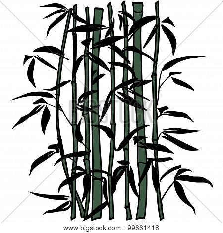 Bamboo Leaf Background. The Top Of The Bamboo.