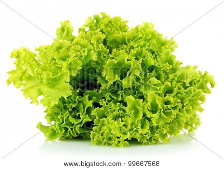Green fresh lettuce isolated on white