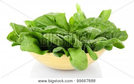 Green fresh leaves of basil in bowl isolated on white