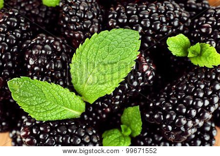Ripe blackberry background