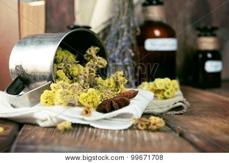 Dried herbs and bottles with tinctures on table close up