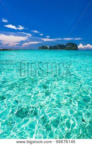 Blue Paradise Marine Fantasy