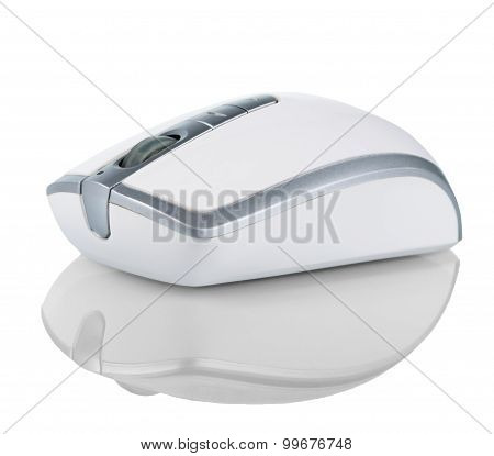 Computer Mouse Isolated On A White Background
